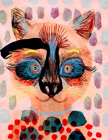 Jacinthe Chevalier raton concours livre julie delporte la courte échelle blog animal raton laveur mignon